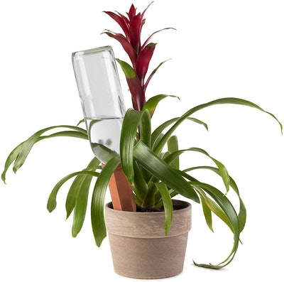 Modern Innovations Self-Watering Plant Stakes (4-Pack)