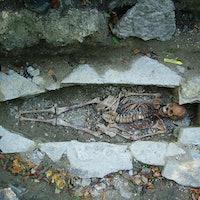 Vikings, neanderthals: setting the genetic record straight
