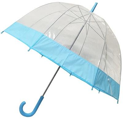 Blue Trim Clear Umbrella