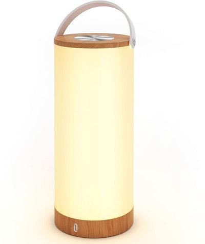 TaoTronics TT-DL23 Portable Lantern