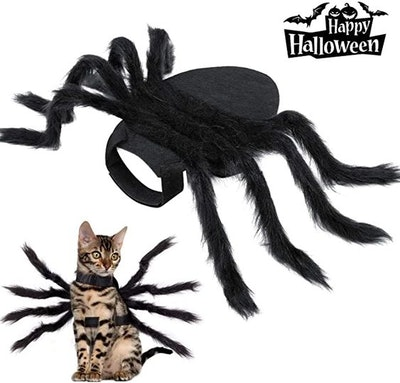 Halloween Spider Costume for Dog Cat
