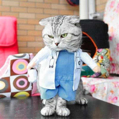 Cat Doctor Costume