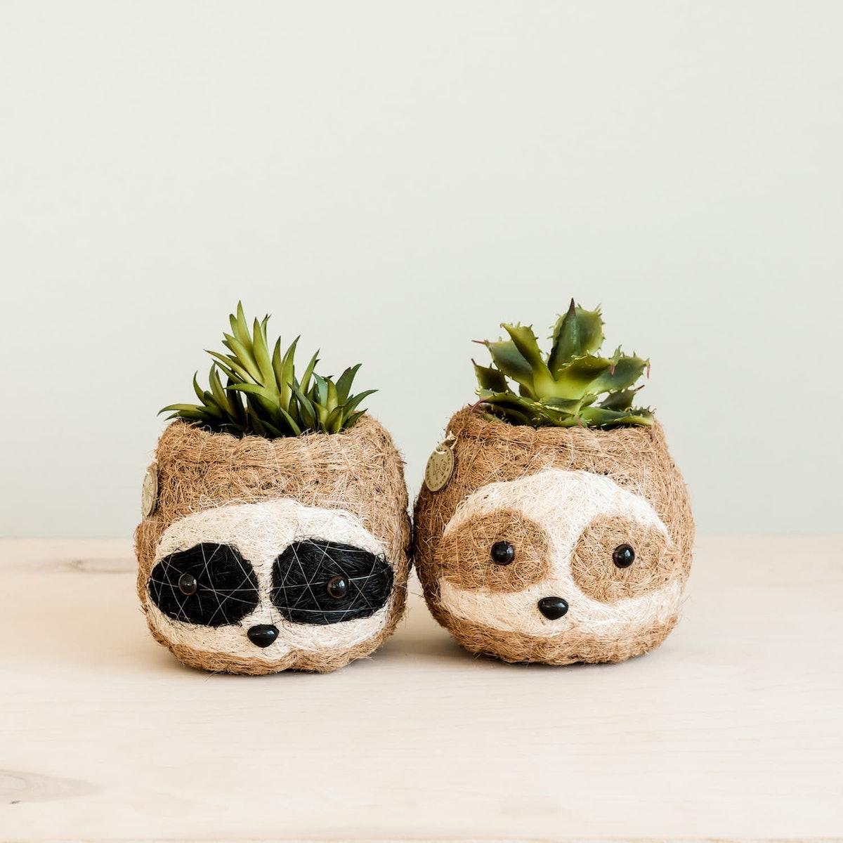 Coco Coir Animal Planter Mini Pot 3-Tone Sloth Dark