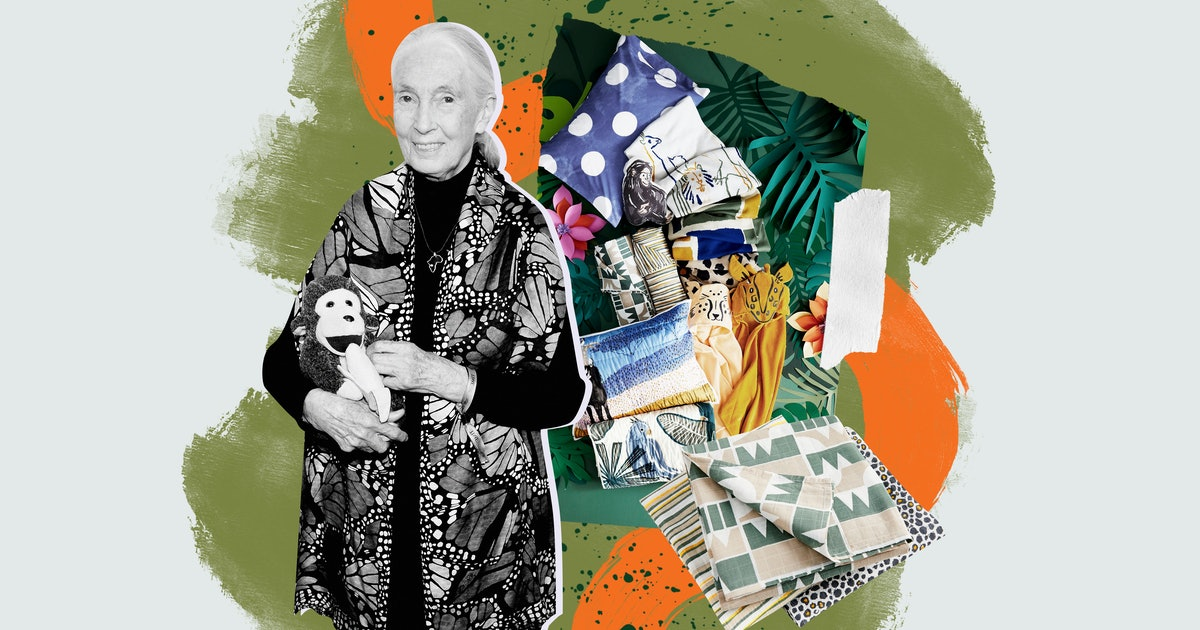Jane Goodall's Children's Collection With Crate & Kids Is Simply Incredible