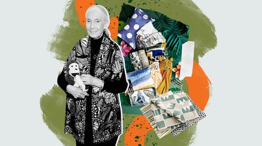 Jane Goodall's collection with crate and kids