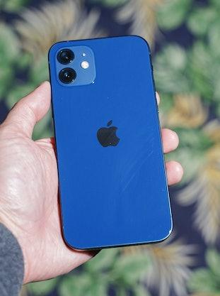iPhone 12 vs. iPhone 12 comparison review