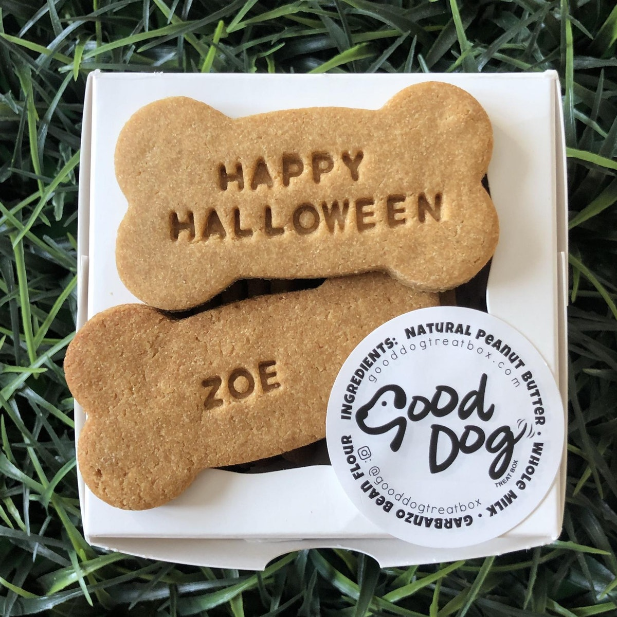 Personalized Halloween Dog Treat Boo Package