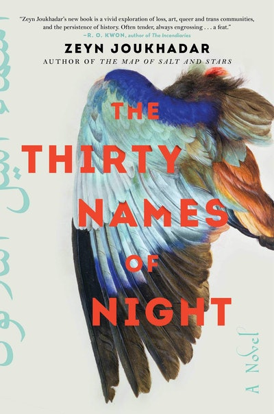 'The Thirty Names of Night' by Zeyn Joukhadar