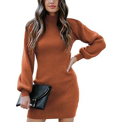 Caracilia Turtleneck Sweater Dress