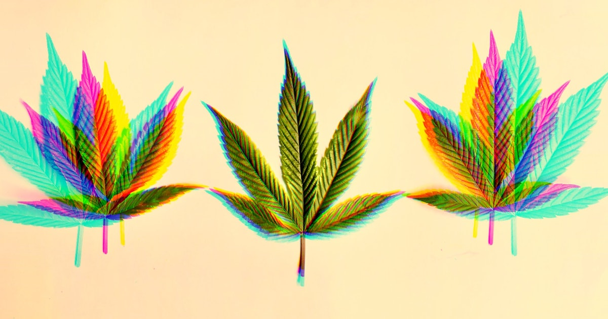 """Delta-8-THC: Scientists explain the cannabis industry's """"latest hype"""""""