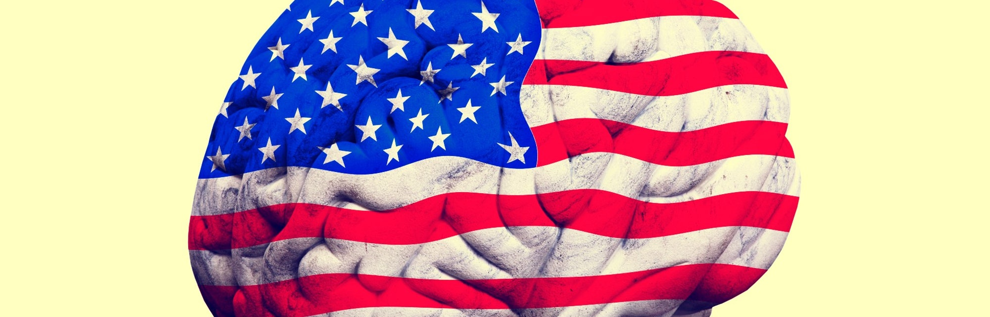 politics, United States, brain