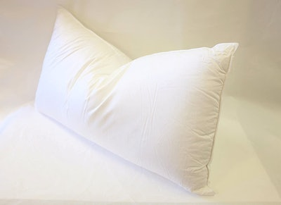 East Coast Bedding European Down Pillow