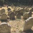 Britain's oldest pet cemetery