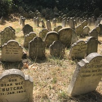 The tombstones of 1,000 pets tell a very human story