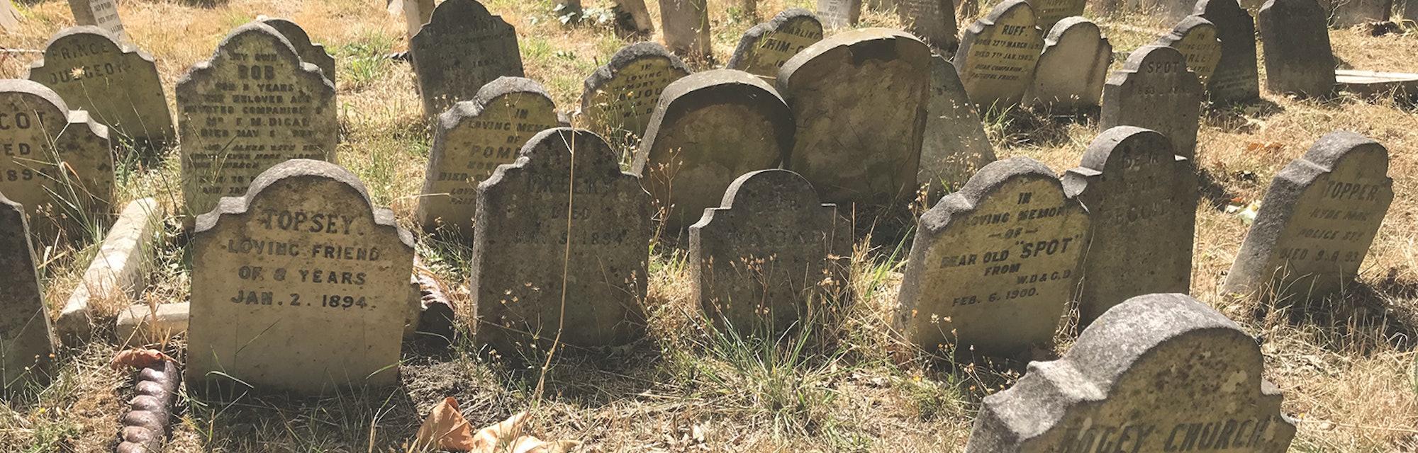 Britain's oldest pet cemetery