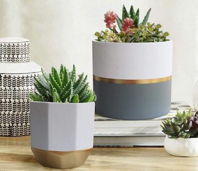 EXQUIS HOME LA JOLIE MUSE Ceramic Flower Pot (2-Pack)