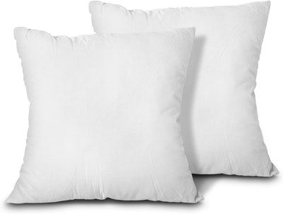 EDOW Throw Pillow Inserts (2-Pack)