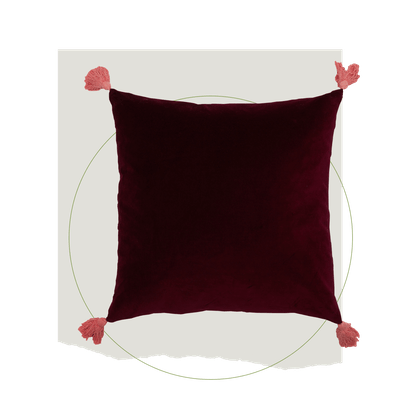 Velvet Decorative Throw Pillow with Tassels by Drew Barrymore Flower Home
