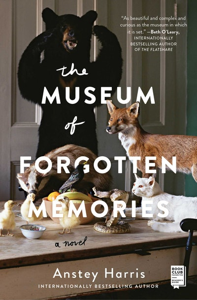 'The Museum of Forgotten Memories' by Anstey Harris