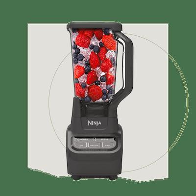 Ninja Professional 1000-Watt Blender