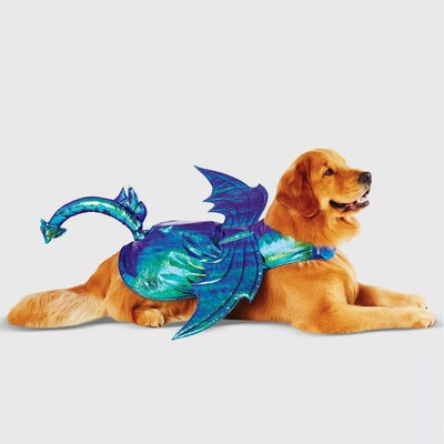 ‎ Iridescent Green Dragon Halloween Dog