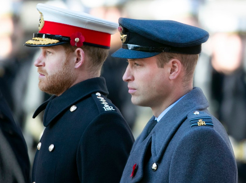 Prince Harry and William in profile both wearing military uniforms