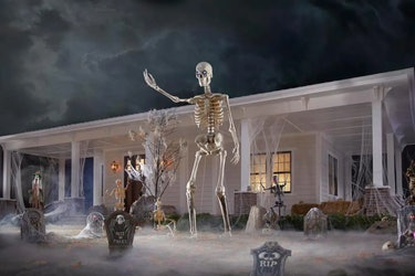 The skeleton on a lawn