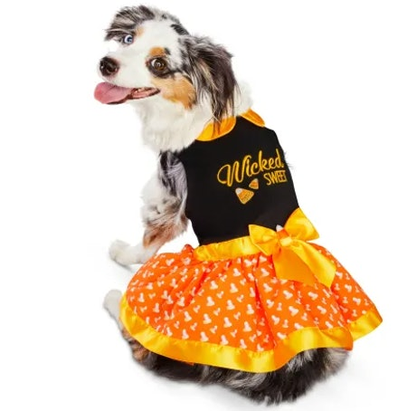 Bootique Wicked Sweet Dog Dress