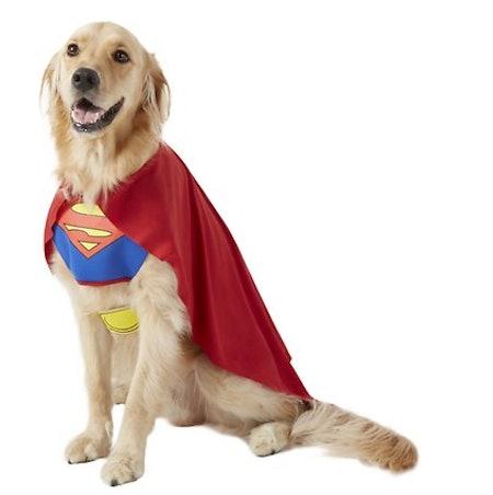 Classic Superman Dog & Cat Costume