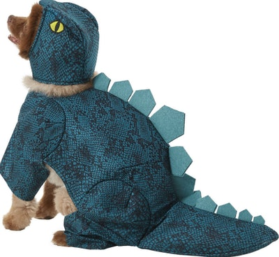 Frisco Stegosaurus Dinosaur Dog & Cat Costume