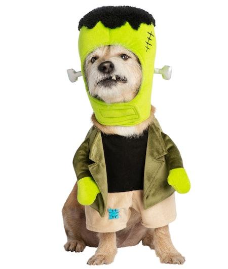 Halloween Monster Pet Costume