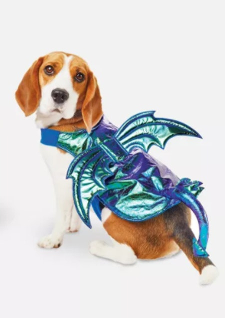 Iridescent Green Dragon Halloween Dog and Cat Costume