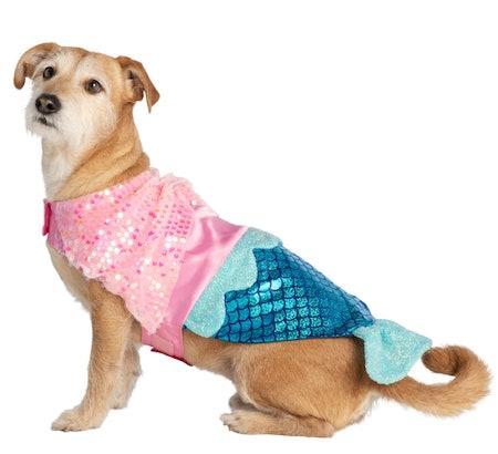 Halloween Mermaid Pet Costume