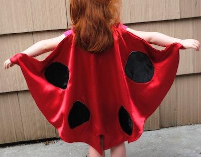 Ladybug Cape Costume