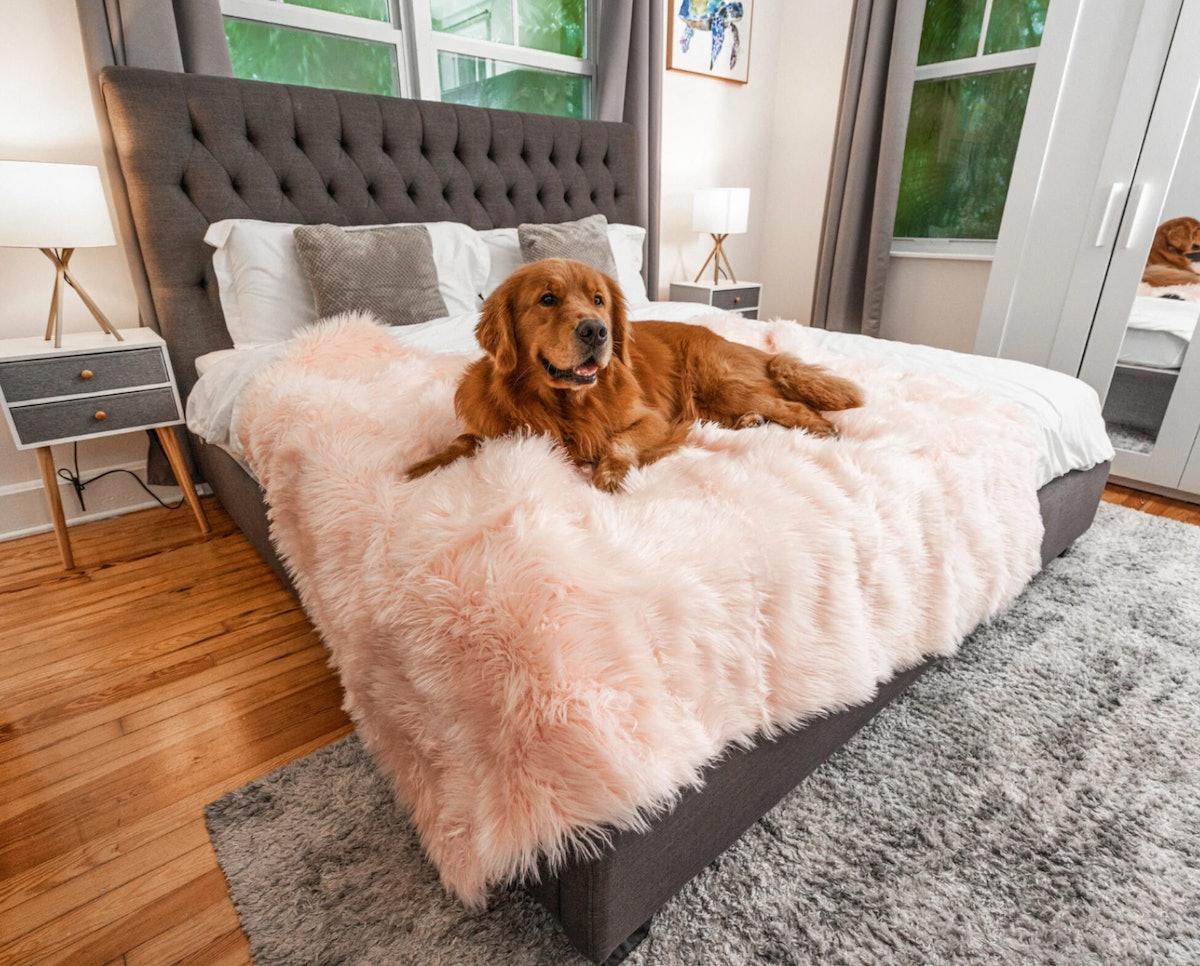 PupProtector™ Waterproof Throw Blanket - Blush Pink