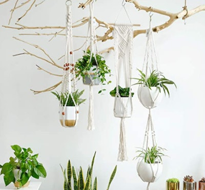 Potey Plant Hangers (4 pack)