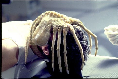 A facehugger from the movie 'Alien' attacking a person's face.
