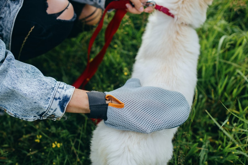 the best dog grooming gloves