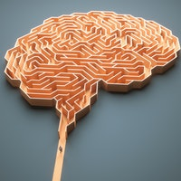 Does being bilingual have cognitive benefits?