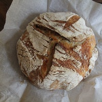 How yeast makes sourdough bread bubbly and delicious