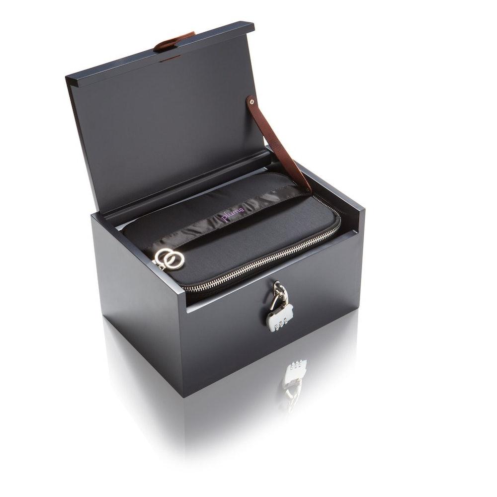 Adult Toy Storage Box