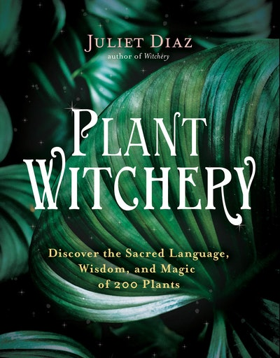 'Plant Witchery: Discover the Sacred Language, Wisdom, and Magic of 200 Plants' by Juliet Diaz