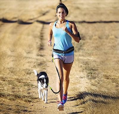 Paw Lifestyles Hands Free Dog Leash