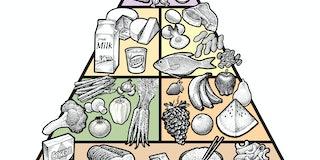 food, diet