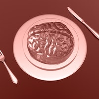 Brain food: The surprising new links between nutrition and health