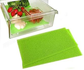 Dualplex Fruit & Veggie Life Extender Liner (2-Piece)