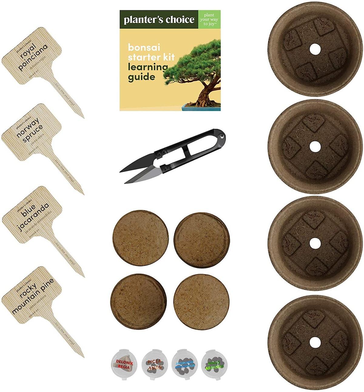 Planter's Choice Bonsai Planter Kit