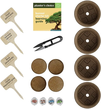 Planter's Choice Bonsai Planter Kit
