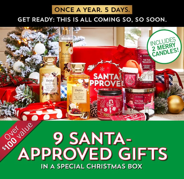 A sneak preview of Bath and Body Works' Christmas box.