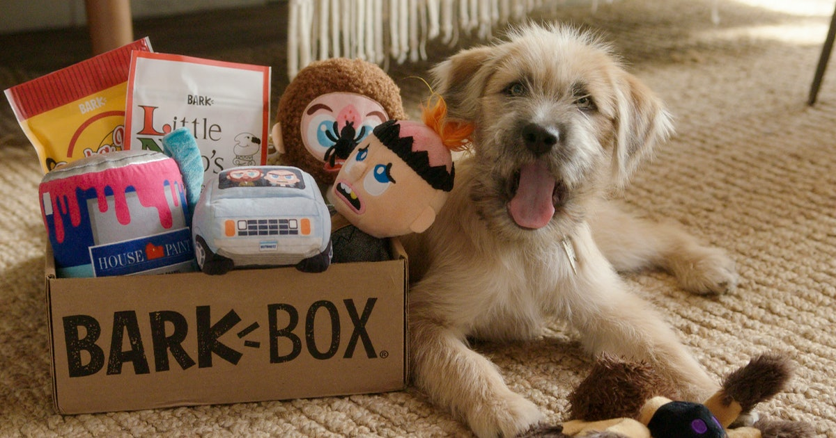 This 'Home Alone'-Themed BarkBox Will Make Your Dog's Holiday Extra Special